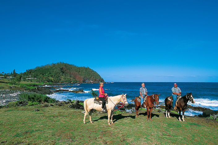 Horse Properties For Sale Maui