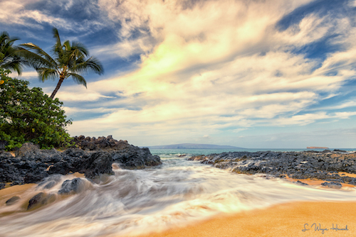 Hawaii Real Estate Eric West Testimonials