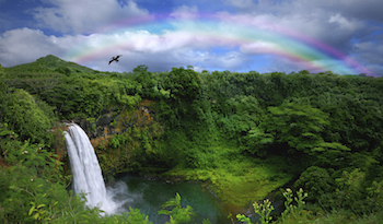 Exceptional Big Island Hawaii Real Estate